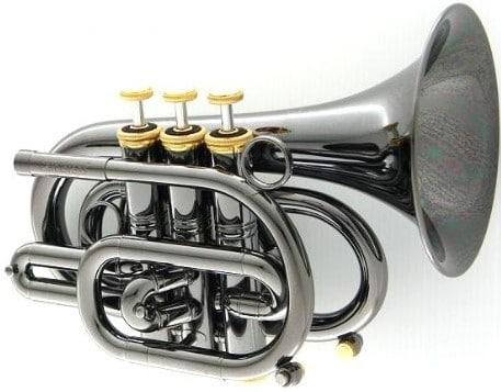carol cpt-3000-gls trumpet