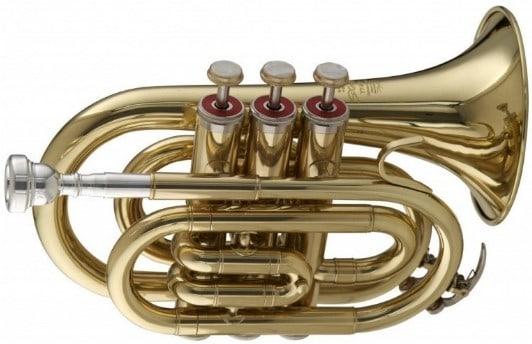 stagg ws-tr245 trumpet