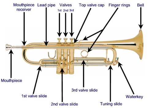 parts of a trumpet diagram beginner's guide parts of a trumpet [diagram]